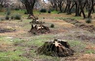 """Azerbaijan unveils plans to eliminate damage caused by Armenia to environment of liberated lands <span class=""""color_red"""">[PHOTO]</span>"""