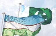 Uzbekistan, Pakistan discuss boosting trade ties, railway link
