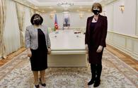 British minister, speaker of Azerbaijani parliament discuss issues on domestic violence against women