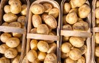 Azerbaijan boosts potato exports in 2020