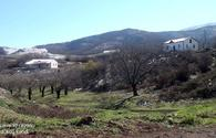 "Azerbaijan shares video from Khojavand's Dudukchu village <span class=""color_red"">[VIDEO]</span>"