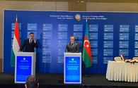 Diversification of gas supplies to Europe impossible without Azerbaijani gas - Hungarian FM