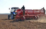 Azerbaijani farmers begin using Turkey's agricultural experience in liberated lands
