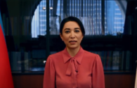 """Ombudsman of Azerbaijan makes video-message on occasion of International Day of Mine Awareness <span class=""""color_red"""">[VIDEO]</span>"""