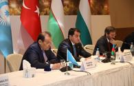 Azerbaijan working to develop ties between Turkic states - president's assistant