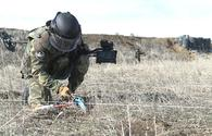 Azerbaijan continues to de-mine liberated territories