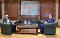 Meeting between Azerbaijani, Georgian foreign ministers being held