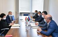 Azerbaijan, Georgia eye cooperation in culture and sports