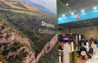 """Shusha's tourism potential showcased at int'l expo <span class=""""color_red"""">[PHOTO]</span>"""