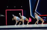 """Athletes train for Aerobic Gymnastics World Age Group Competitions <span class=""""color_red"""">[UPDATE]</span>"""