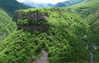 Azerbaijan's liberated lands can contribute to tourism dev't - Rapid Solutions LLC