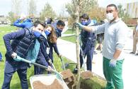 """Tree planting held in Baku on eve of World Aerobic Gymnastics Championship <span class=""""color_red"""">[PHOTO]</span>"""