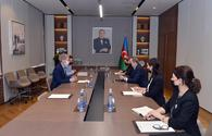 Azerbaijan thanks UK for assistance in demining liberated lands