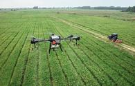 Production of agricultural drones kicks off in Azerbaijan