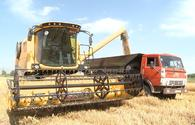"""Wheat harvesting continues in villages of Azerbaijan's Tartar near liberated lands <span class=""""color_red"""">[PHOTO]</span>"""