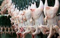 Azerbaijan bans poultry import from 40 countries