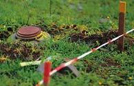 Experts see new deal on landmines as Baku's diplomatic success
