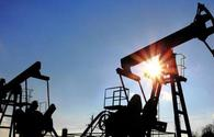 Volatility of oil prices can't affect Azerbaijan's national currency rate - CBA