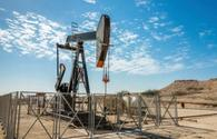 Turkmenistan transferring some fields to gas-lift method of operation