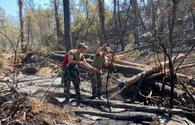 """Azerbaijani firefighters prevent spread of fires in Turkey's Marmaris region <span class=""""color_red"""">[PHOTO/VIDEO]</span>"""