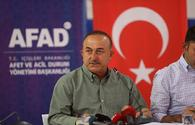 Another group of firefighters from Azerbaijan to arrive in Turkey on August 5 - Turkish FM