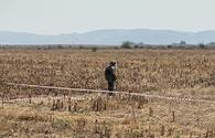 About 300 mines, unexploded ordnance defused in Karabakh