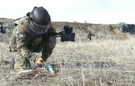 Over 1,000 mines, munitions defused in Karabakh in Aug 2021