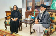 Party leader: Afghanistan awaits Turkey's support
