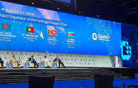 Minister: Azerbaijan to bring renewable energy share to 30 pct by 2030