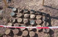 Some 199 mines, munitions defused in liberated lands