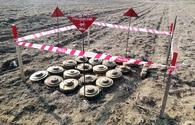 Azerbaijan gives update on mine clearance work on its liberated lands
