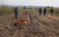 """Azerbaijan reveals number of mines, munitions found on its liberated lands <span class=""""color_red"""">[PHOTO]</span>"""