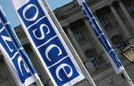 Unresolved conflicts remain priority of Germany's presidency of OSCE