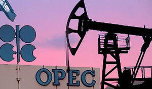 OPEC daily basket price up
